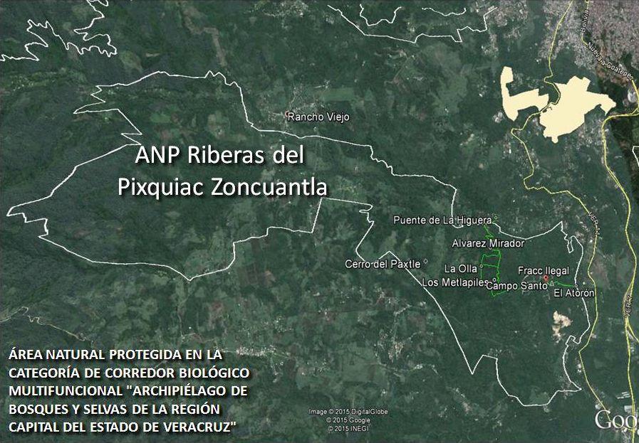 ANP Riberas del Pixquiac Zoncuantla