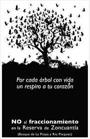 arbol_de_pajaros-_la_reserva_220px