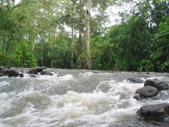 Rio Pixquiac, al nivel del Puente de Seis de Enero, Zoncuantla